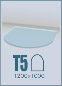 Напольное стекло под камин T-5